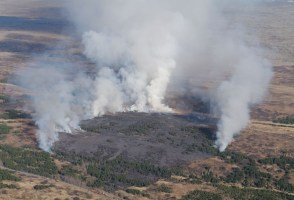Brush Fire In Heiðmörk