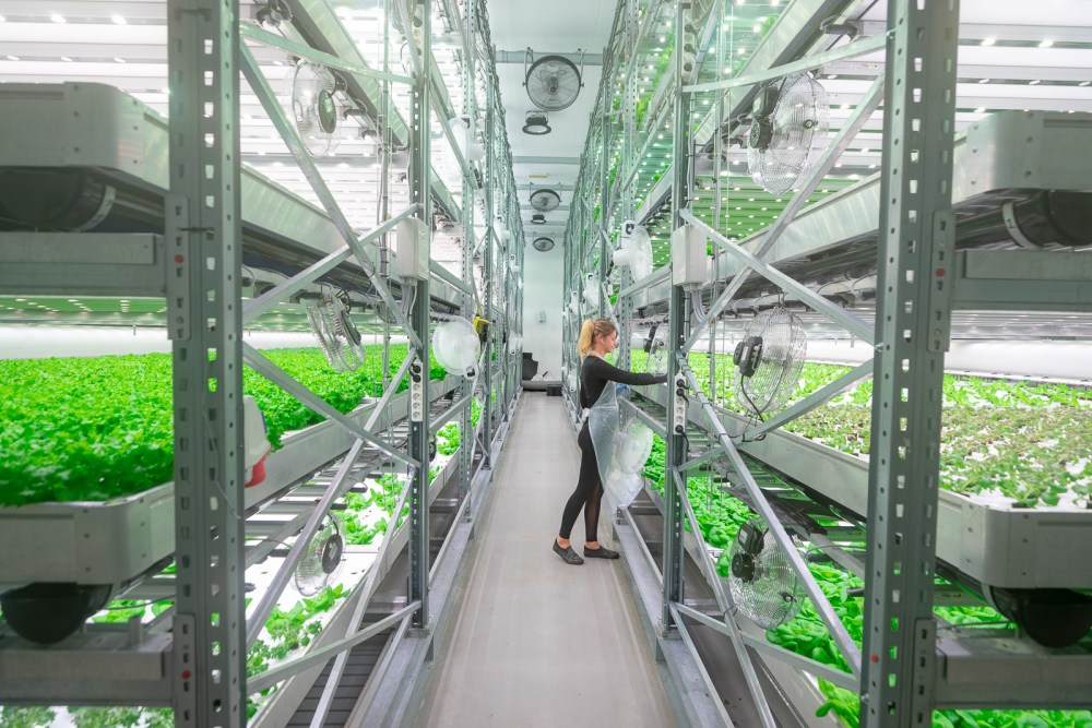 The Farm Of The Future: VAXA Introduces A New Way Of Farming