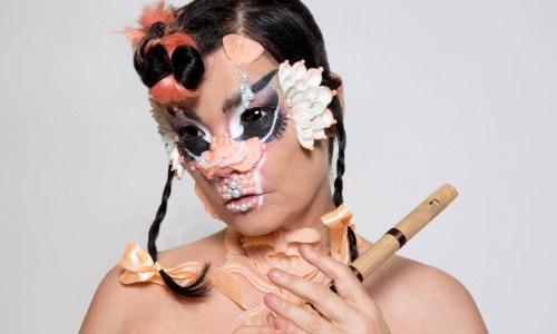 Björk Speaks Out About Politics In Iceland