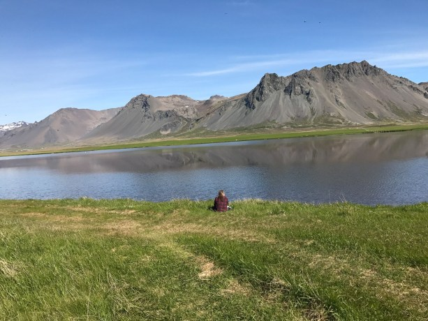 Scratching The Twitch: Birdwatching In Iceland - The
