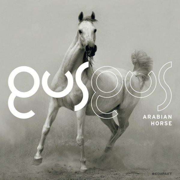 TRACK OF ISSUE – GUSGUS ARABIAN: HORSE SAMPLER