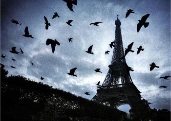 The Art of Visiting Paris