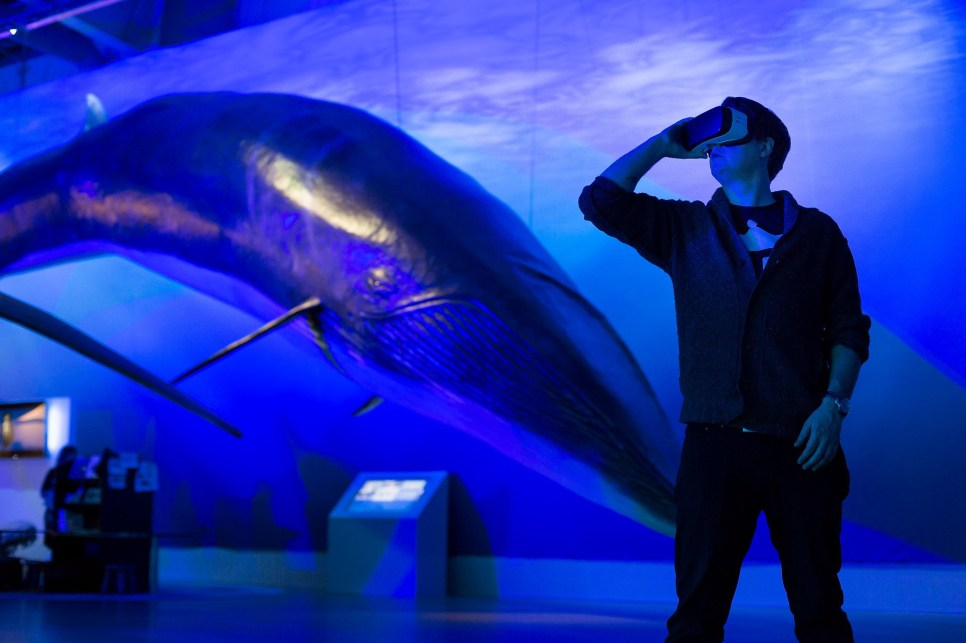Dive even further into the exhibition with the virtual reality display