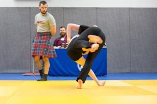 Icelandic Wrestling