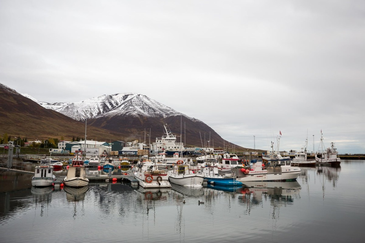 Dalvík Town Guide: Hiking, Heli-skiing & Bathing In Beer