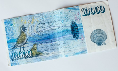 Iceland Proposes A Novel Solution To Tax Evasion