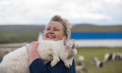 Outside Of Reykjavík: Mountains, Sagas And… Goats