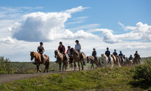 PHOTOS: Horseback Riding On The Outskirts Of Reykjavík