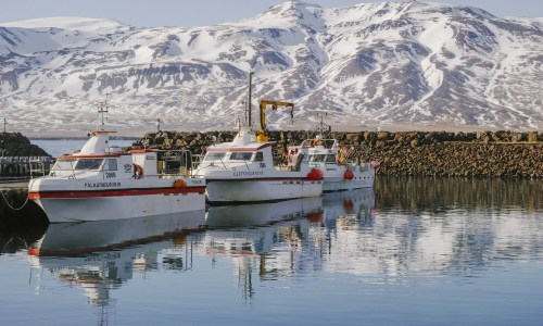 Best Of East Iceland 2018: Must-See Spot