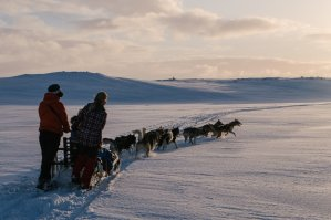 DogSledding_TimotheeLambrecq-26