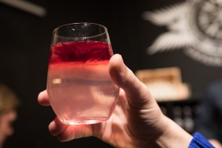 A glass with a unique drink of Gin