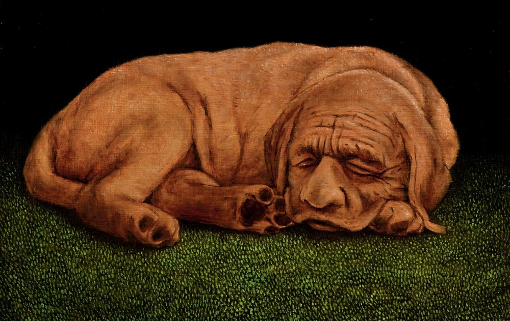 Monster Of The Month: Finngálkn – The Sphinx
