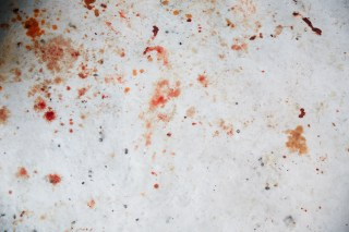 Blood-Splattered Snow In Nuuk