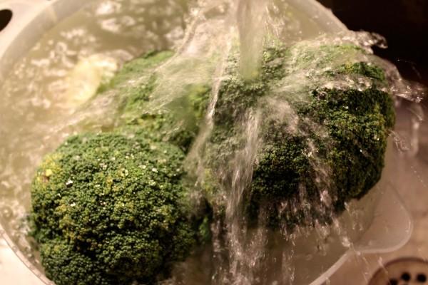 Wet Broccoli