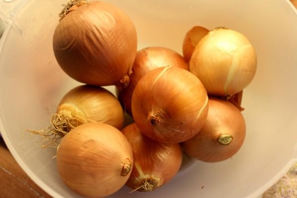 German Onions
