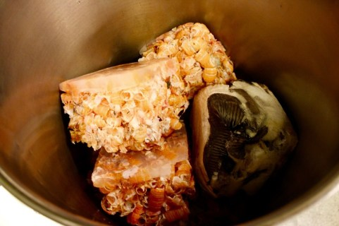 Langoustine shells and Halibut skin
