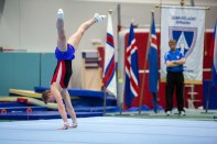 Reykjavik International Games - Gymnastics by Art Bicnick (101)