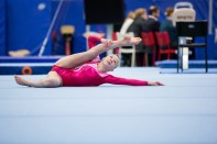 Reykjavik International Games - Gymnastics by Art Bicnick (150)