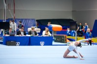 Reykjavik International Games - Gymnastics by Art Bicnick (97)