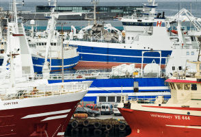 "Iceland's Fishing Minister: No Plans For ""All-Seeing Eye"" Within Government"