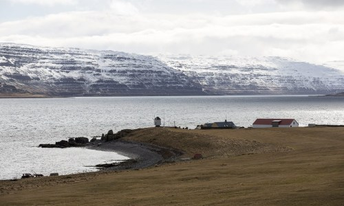 Best Of The Westfjords 2018: Best Tour