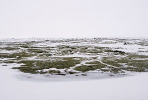 Man Dies After Becoming Stuck In Water In Selfoss Swamp