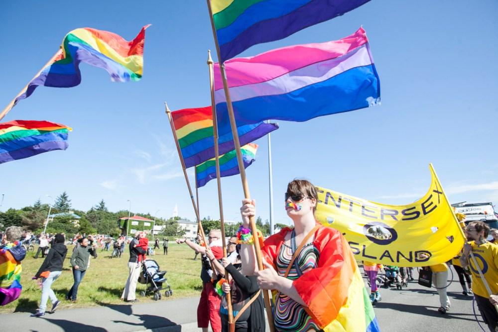 Reykjavík Pride 2014 In Pictures