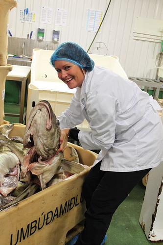 In Iceland's Fish Industry, The Women Are From Marz