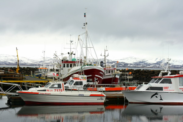 drangsnes_harbour