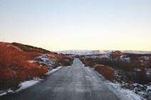 Snowy Road in Heiðmörk