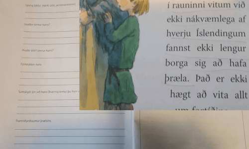 """Make Your Own Slave"" Exercise In Icelandic Primary School Textbook"