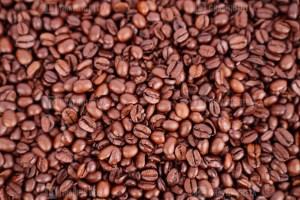 Coffee macro photo
