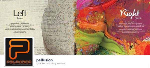 Pelfusion Facebook Timeline Cover