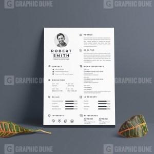 Pro Vector Resume CV Design