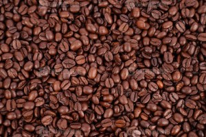 Best coffee beans photo
