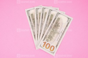 Five Hundred Dollars Isolated on Pink