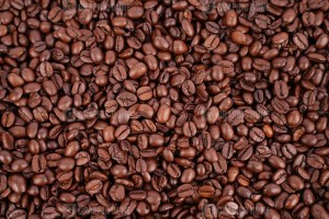 High quality coffee beans photo