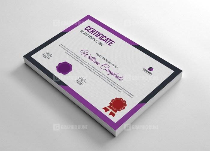 Modern Award Certificate Template