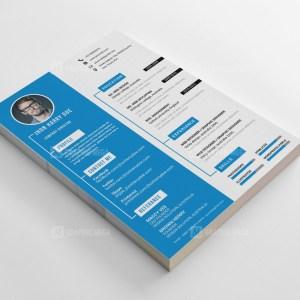 Director Resume CV Design