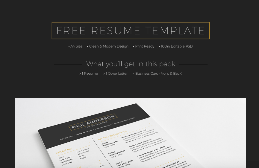 20 free and premium best resume templates word psd indd