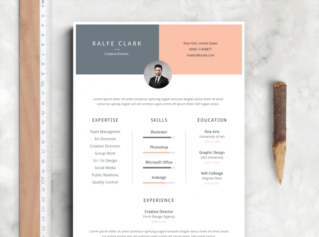 fre resume template