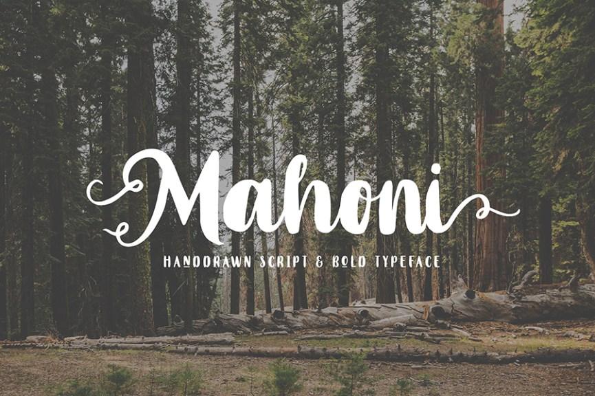 01 - Mahoni Bold Script Demo