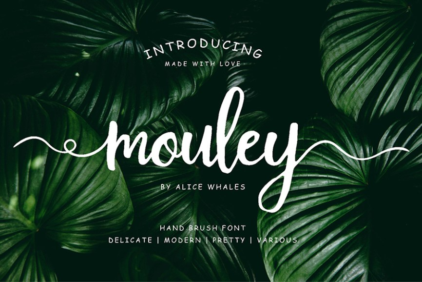 01 - Mouley Script Free Font