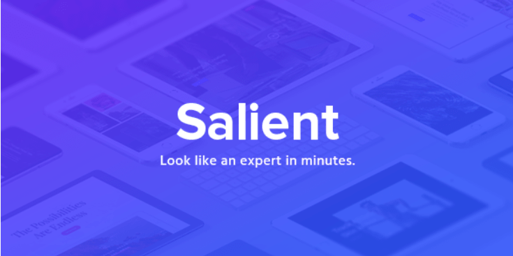 11 - Salient Responsive Multi Purpose Theme