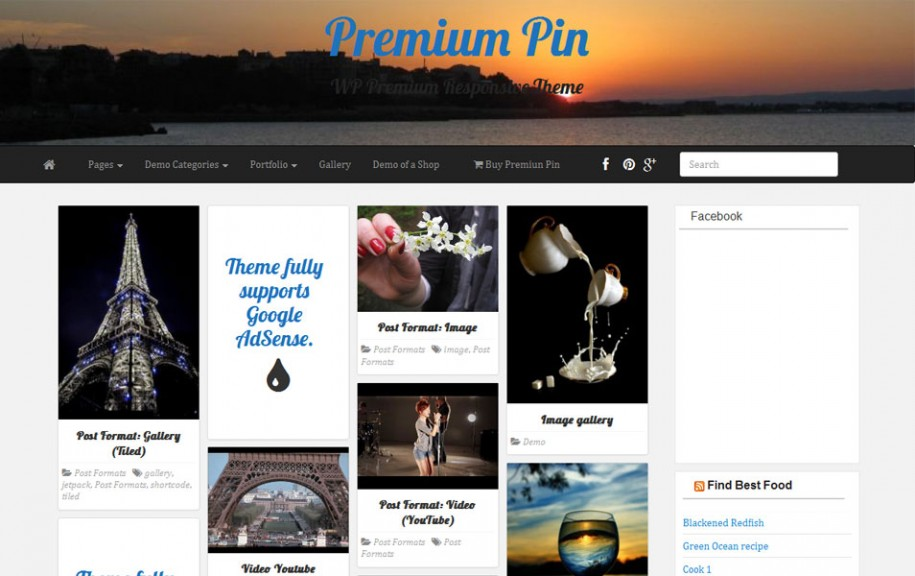 70 - PR Pin Free Portfolio WordPress Theme