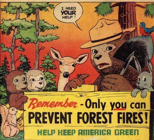 smokey bear ad