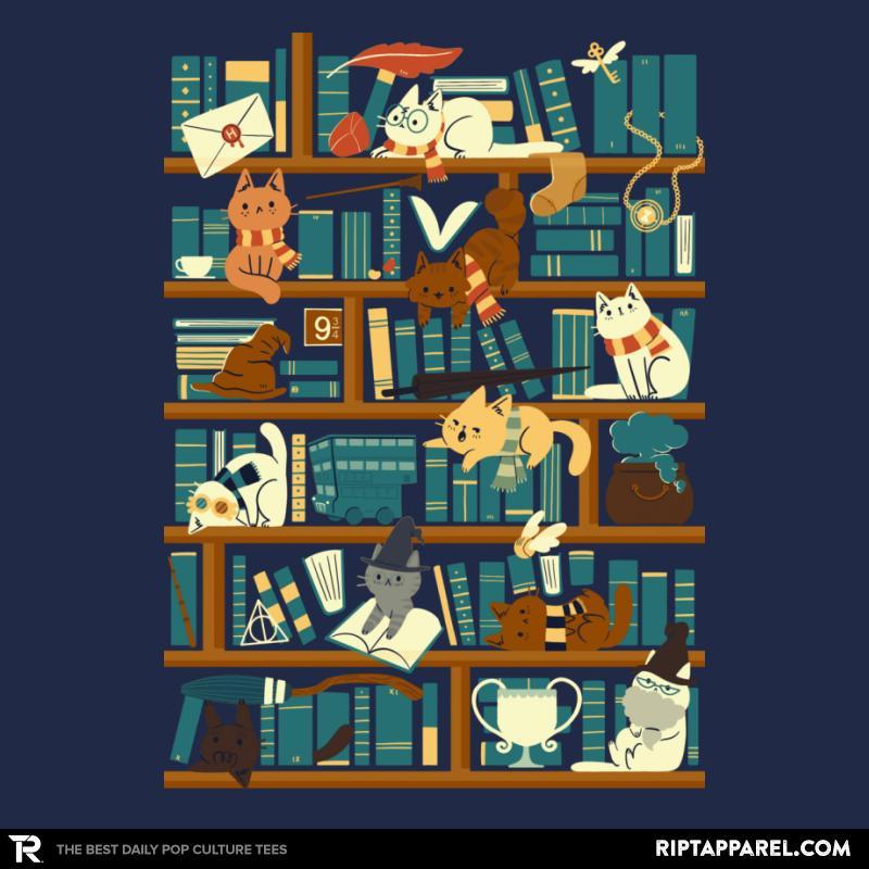 Library Magic School