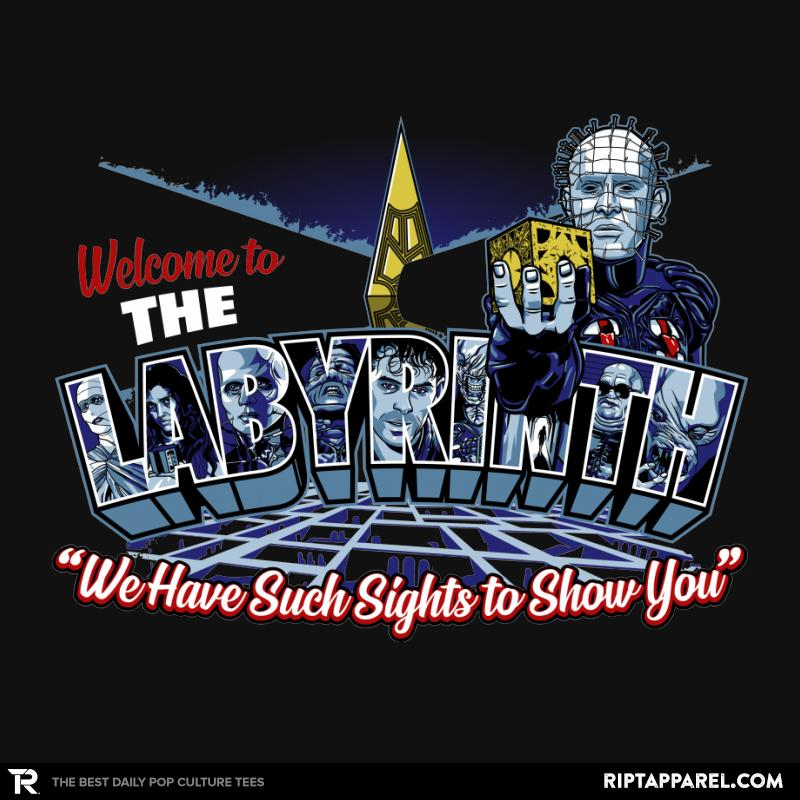 Welcome to The Labyrinth