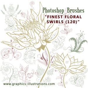 What makes the Photoshop brushes great tool for beginners too?
