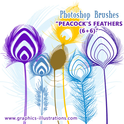 Peacock's Feathers Free Photoshop brushes set